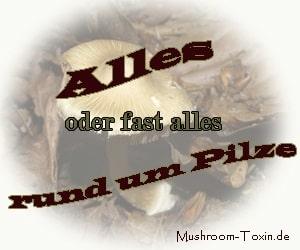 Mushroom-Toxin.de - Pilze
